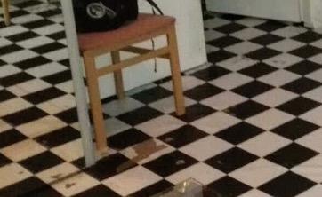 床がはがれているWG