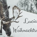 LUCIAWeihnachtsmarkt