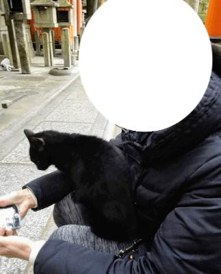 伏見稲荷大社 お山めぐり 猫と