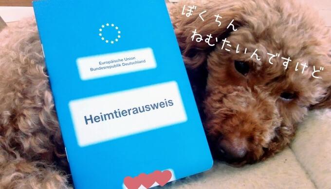 EUペットパスポート